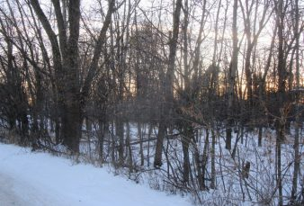 Exclusive Wooded complex close to campus