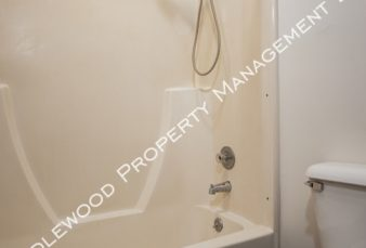 One Bed Deluxe Marshfield Apartment Available NOW!